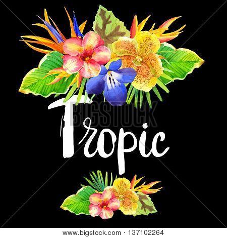 Floral illustration with tropical flowers and plants on black background. Composition with palm leaves orchid lily and strelitzia.