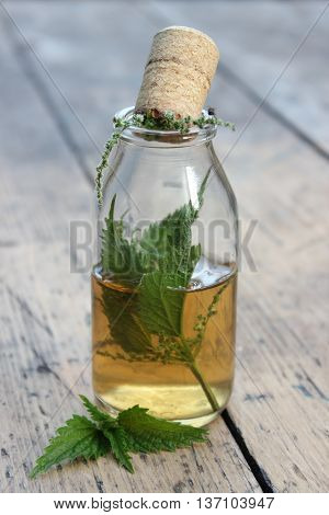 Jar with alcohol tincture and nettle leaves on a background of boards.