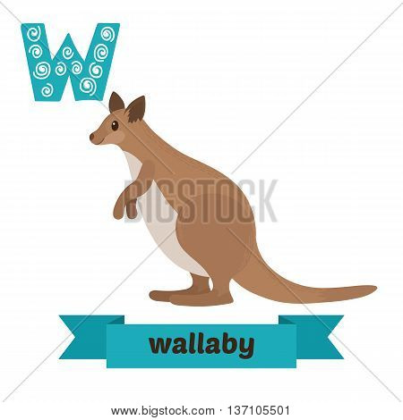 Wallaby. W Letter. Cute Children Animal Alphabet In Vector. Funny Cartoon Animals. Vector Illustrati