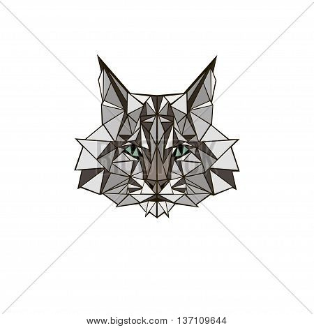 vector illustration abstract portrait of a bobcat