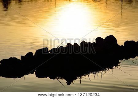 Bright yellow sunset reflected in calm water and back lit rocks with twigs sticking up as an abstract nature background