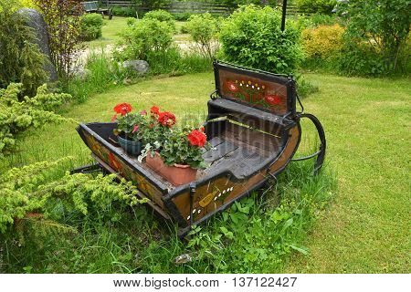 old rusty wooden sleigh with flower pots in ranch yard