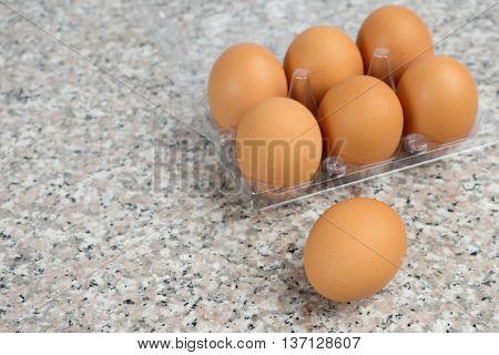 Fresh Egg On Plastic Tray