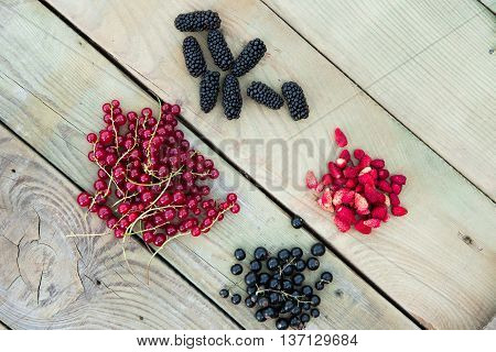 Mix Of Currants Mulberry And Strawberry