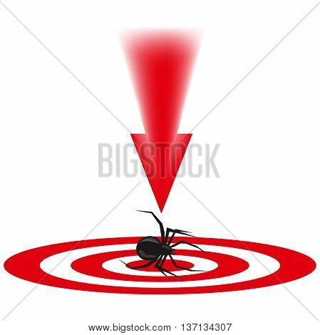 the spider a dangerous insect, an animal with paws, blows to the malefactor, an insect on a look, a red arrow, destruction of a being, insects with a thin body, long legs, to kill a creature