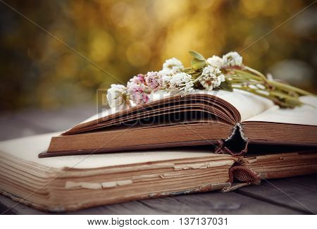 The bouquet of a clover lies on old open books on a wooden table.