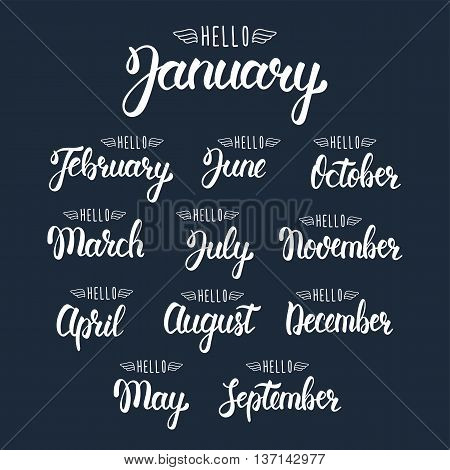 Calligraphic set of quote Hello months of the year. Brush handwritten months of the year. Hand lettering names of months. Calligraphic set in white ink. Vector illustration