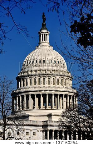 Washington DC - April 10, 2014: The majestic great dome of the United States Capitol topped by Thomas Crawford's bronze statue entitled Freedom