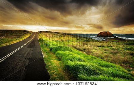 Beautiful road to the sea. Grass. Sea before the storm.
