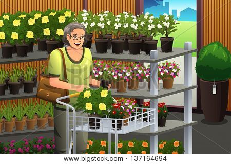A vector illustration of senior woman shopping plant