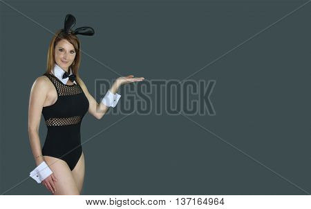 beautiful female wearing a sexy bunny outfit over a gray background
