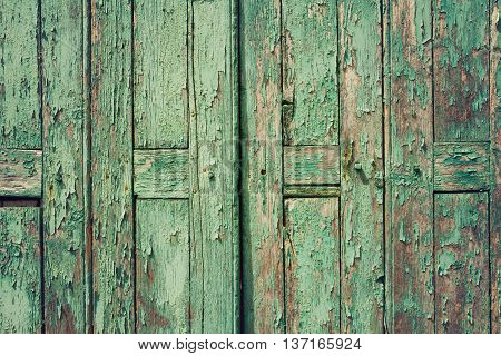 Wooden rustic background with old green planks. Vintage door detail
