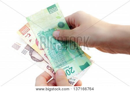 Hands counting Mexican Pesos bills on white background