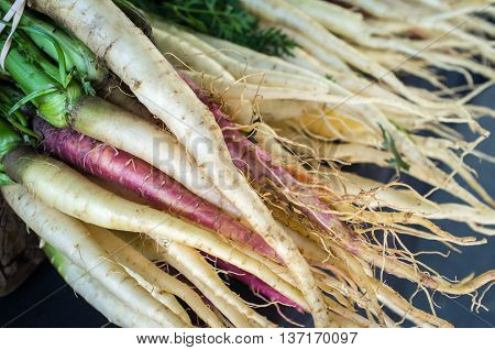 Colorful organic carrots on display at local farmers market