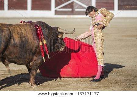 Linares SPAIN - August 28 2014: The Spanish Bullfighter Curro Diaz bullfighting with the crutch in the Bullring of Linares Spain