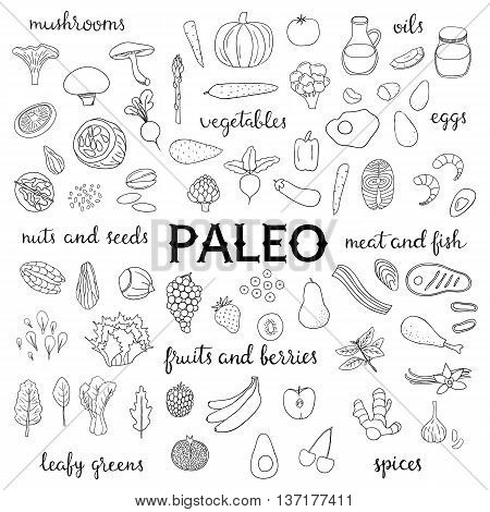 Hand drawn outline paleo diet food isolated on white background. Vegetables fruits berries nuts seeds leafy greens meat seafood fish mushrooms spices oils.