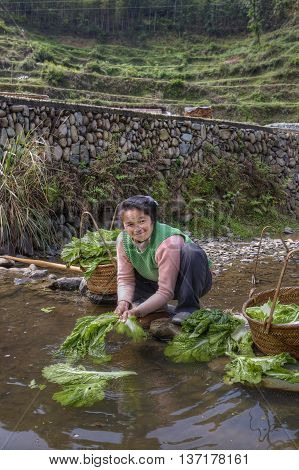 Zhaoxing Dong Village Guizhou Province China - April 8 2010: Asian woman washing salad leaves in water rural river squatting and smiling.