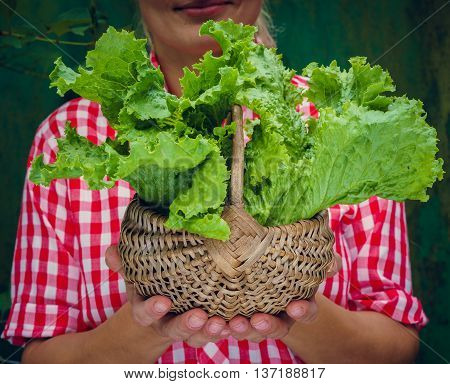 Girl on a green background holding basket with lettuce. Rockabilly style. Space for text