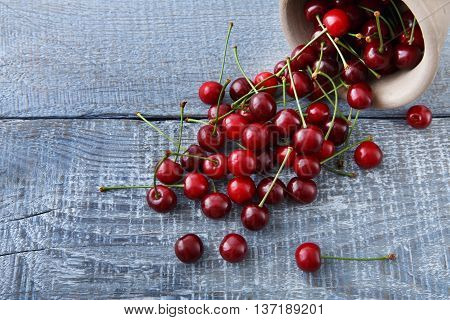 Sweet fresh cherries pour out of a bowl on blue rustic wood. Closeup, scattered fruit backround. Healthy food at table