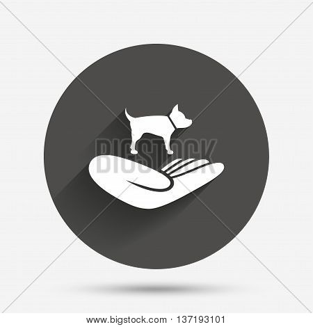 Shelter pets sign icon. Hand holds dog symbol. Animal protection. Circle flat button with shadow. Vector