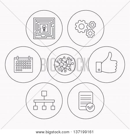 Global network, like and hierarchy icons. Maze linear sign. Check file, calendar and cogwheel icons. Vector