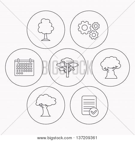 Pine tree, oak-tree icons. Forest trees linear sign. Check file, calendar and cogwheel icons. Vector