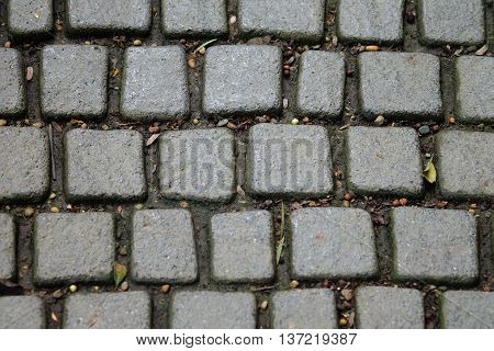 Stone pavement texture background. Abstract background of old cobblestone pavement close-up