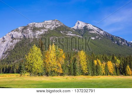 The sunny day in the Canadian Rockies. Mountain valley in Banff National Park