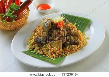 Salted minced turtle softshells on the dish
