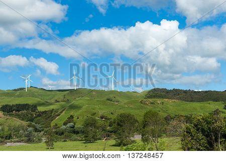 Rolling New Zealand farmland with wind turbines on horizon.