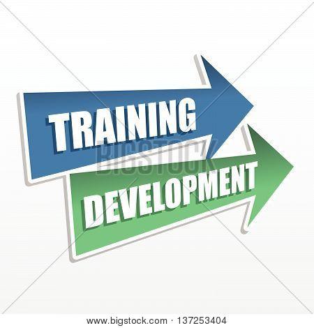 training development - text in arrows, business education concept, flat design, vector