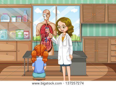 Doctor explaining human anatomy illustration