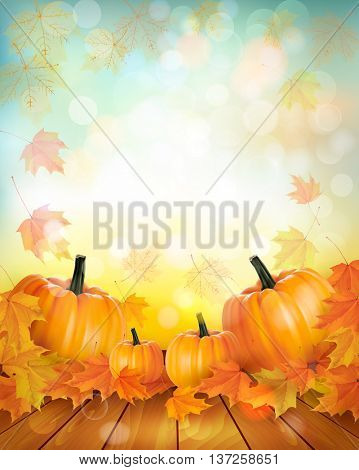 Autumn pumpkin harvest background with leaves. Vector.