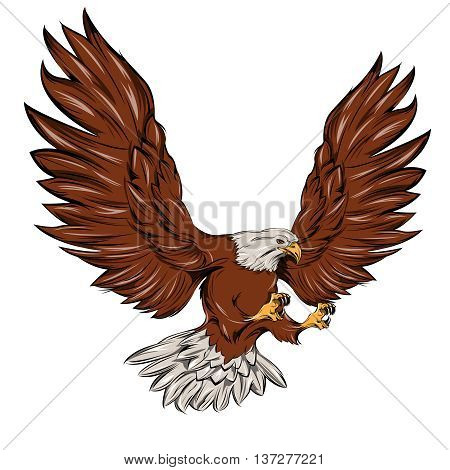 Single eagle during landing with open wings and outstretched talons on white background isolated vector illustration