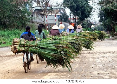 THANH HOA, Vietnam, April 22, 2016 Women's groups, rural Tsinghua, Vietnam, participated in rural transport, cycling, heavy load, sugarcane