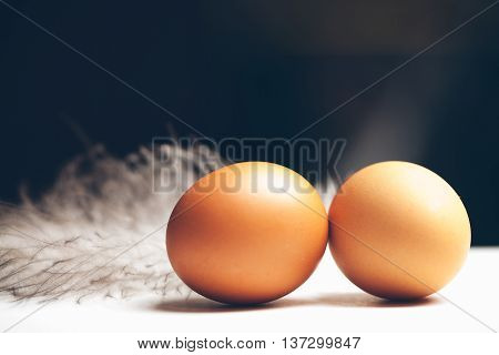 Pair Of Domestic Eggs