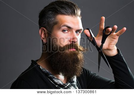 Bearded Man With Hairdresser Scissors