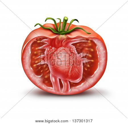 Tomato heart health medical icon as a fruit and vegetable healthcare symbol for natural antioxidant and cardiovascular nutrition supplement to help prevent heart attacks and strokes rich in lycopene and carotenoids in a 3D illustration style.