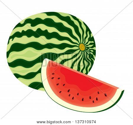 Vector illustration of isolated, fresh, whole watermelon and slice of watermelon in colour on white background