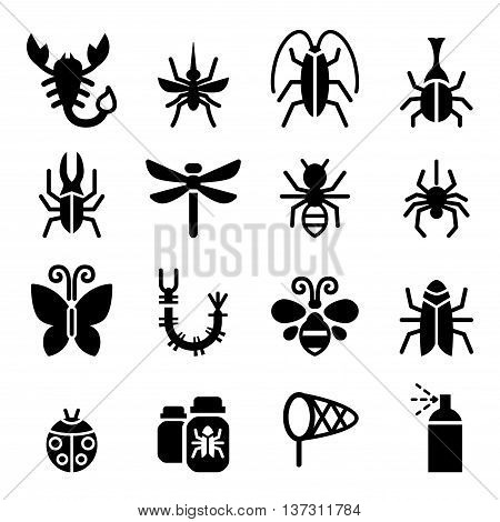 Bug & Insect icon  Vector illustration Graphic design