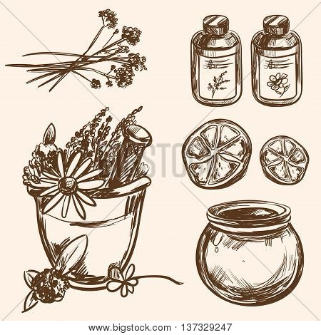 Ayurveda vector Hand drawn Set Healthy lifestyle Harmony with nature