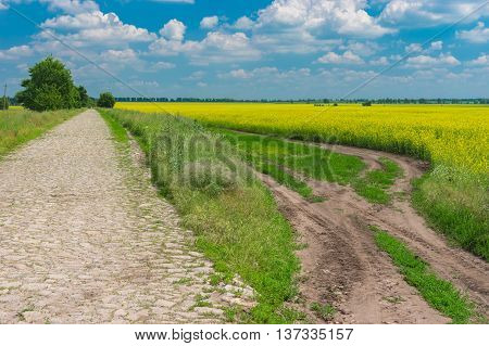 Summer landscape with stone road in leading to small village Kozlivshyna Poltavskaya oblast Ukraine
