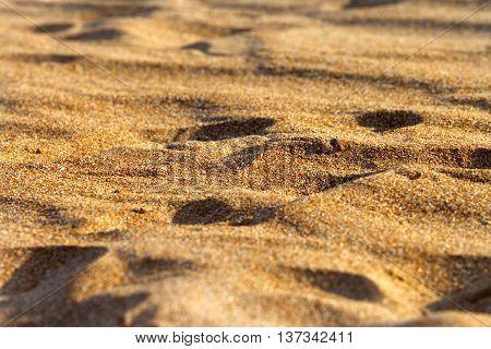 Sand on beach in sun summer day. Selective focus.