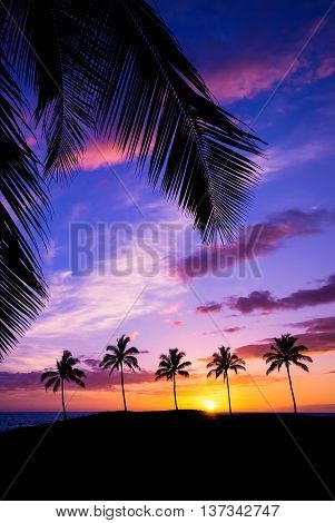 Hawaiian sunset framed with palm tree leaves