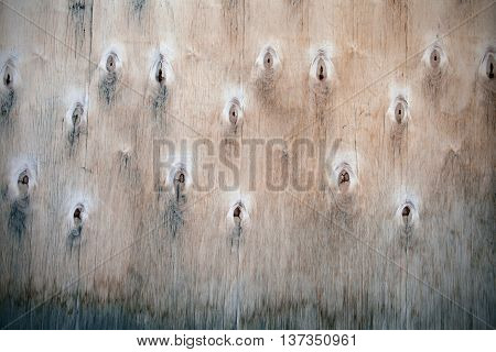 Wood background - old plywood. Natural texture