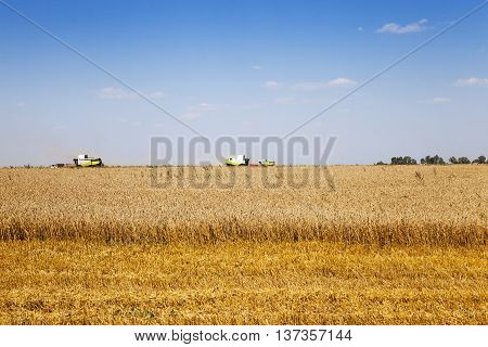 agricultural field, which made harvesting of cereals summer.