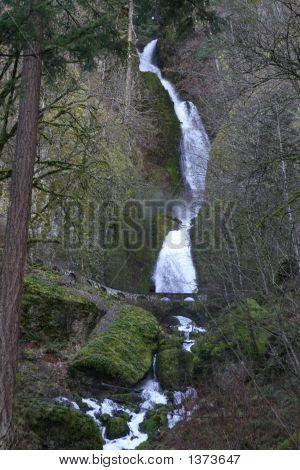 Waterfall- Oregon