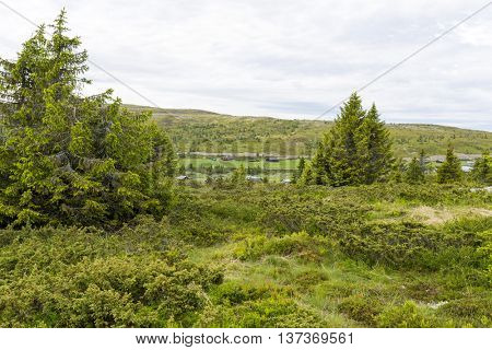 Pellestova mountain plateau near Hafjell, Norway.