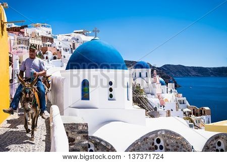 SANTORINI, GREECE - JUNE 16, 2016 :  Donkeys to transport tourists from the harbor to the town Fira on June 16, 2016, located on the top of the mountain.