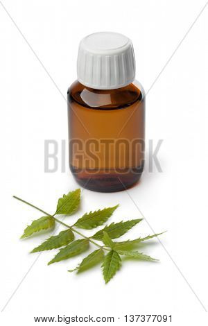 Bottle with Neem oil and green twig on white background